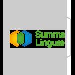 Historia Summa Linguae